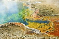 Λεπτομέρειες Yellowstone Στοκ Εικόνες