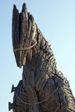 λεπτομερές άλογο τρωικό Στοκ εικόνες με δικαίωμα ελεύθερης χρήσης