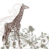 Λεπτομερές giraffe ζώο στο χαραγμένο ύφος Στοκ Εικόνες
