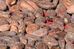 Λεπτομερής άποψη των σπόρων κακάου στο κόκκινο ύφασμα Στοκ φωτογραφία με δικαίωμα ελεύθερης χρήσης