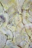 λεπτομερής ανασκόπηση τοίχος πετρών τεμαχίων υψηλός Στοκ Φωτογραφίες
