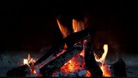Λεπτομερής καίγοντας εστία απόθεμα βίντεο