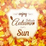 Λεπτός ήλιος φθινοπώρου 10 eps Στοκ εικόνες με δικαίωμα ελεύθερης χρήσης