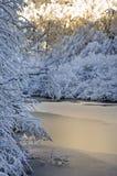 Λεπτός πάγος το χειμώνα Στοκ Εικόνες