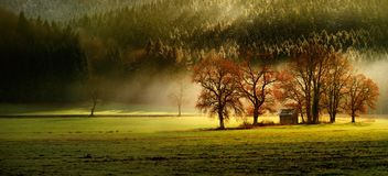 Λεπτότερο φθινόπωρο lansdcape της βαυαρικής φύσης με διάφορο δέντρα και magestic φως και την ομίχλη Στοκ Εικόνες
