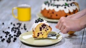 Λεπτό εύγευστο κέικ με τη μαύρη σταφίδα απόθεμα βίντεο