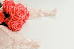 Λεπτό θηλυκό θέμα Ρόδινο χρώμα τάσης τριαντάφυλλων κοραλλιών σε έναν χλωμό - ρόδινο περιδέραιο στηθοδέσμων και μαργαριταριών σε έ στοκ εικόνα με δικαίωμα ελεύθερης χρήσης