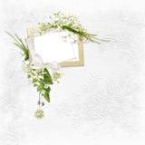 λεπτό λευκό πλαισίων ανα&sig Διανυσματική απεικόνιση