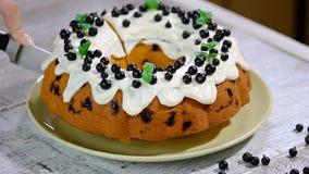 Λεπτό νόστιμο κέικ με τη μαύρη σταφίδα Κοπή του κέικ με τη μαύρη σταφίδα απόθεμα βίντεο