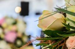 Λεπτό υπόβαθρο της ροδαλής κινηματογράφησης σε πρώτο πλάνο λουλουδιών Στοκ Φωτογραφία