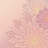 Λεπτό φόντο λουλουδιών Στοκ Φωτογραφίες