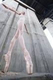 Λεπτό ballerina στοκ φωτογραφίες