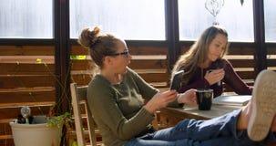 Λεσβιακό ζεύγος χρησιμοποιώντας το κινητό τηλέφωνο και διαβάζοντας το βιβλίο ενώ έχοντας τον καφέ 4k απόθεμα βίντεο