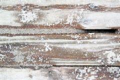 Λευκαμένες αμμώδεις σανίδες και διάστημα κειμένων Στοκ Φωτογραφίες