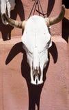Λευκαμένο κρανίο βοοειδών και χρωματισμένος κεραμικός ήλιος, Σάντα Φε, Νέο Μεξικό Στοκ φωτογραφία με δικαίωμα ελεύθερης χρήσης