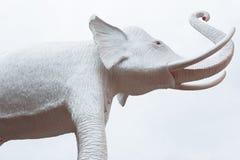 Λευκός ελέφαντας Στοκ εικόνα με δικαίωμα ελεύθερης χρήσης