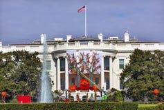 Λευκός Οίκος Washington DC διακοσμήσεων πτώσης αποκριών Στοκ εικόνα με δικαίωμα ελεύθερης χρήσης