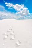 λευκό άμμων ιχνών Στοκ Εικόνες