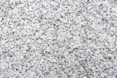 λευκό αμμοχάλικου Στοκ φωτογραφία με δικαίωμα ελεύθερης χρήσης