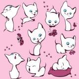 λευκό γατακιών συλλογή& ελεύθερη απεικόνιση δικαιώματος