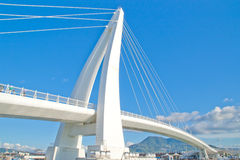 λευκό γεφυρών Στοκ εικόνες με δικαίωμα ελεύθερης χρήσης