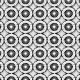 λευκό δαντελλών Στοκ Εικόνα