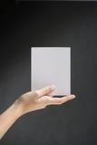 λευκό εκμετάλλευσης χεριών καρτών Στοκ Φωτογραφία