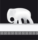 λευκό ελεφάντων Στοκ Εικόνες