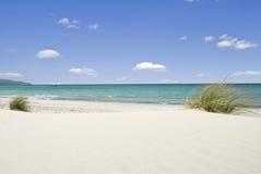 λευκό θάλασσας άμμου Στοκ Εικόνα