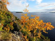 λευκό θάλασσας ακτών Στοκ φωτογραφία με δικαίωμα ελεύθερης χρήσης