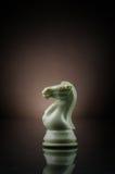 λευκό ιπποτών Στοκ φωτογραφία με δικαίωμα ελεύθερης χρήσης