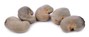 λευκό καρυδιών των δυτικών ανακαρδίων ανασκόπησης στοκ εικόνα