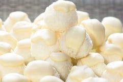 λευκό καρύδων σοκολάτα&si Στοκ φωτογραφία με δικαίωμα ελεύθερης χρήσης