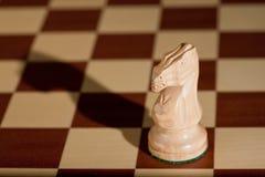 λευκό κομματιού ιπποτών σ Στοκ Εικόνες