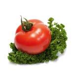 λευκό λαχανικών Στοκ Εικόνα