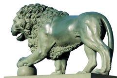 λευκό λιονταριών χαλκού ανασκόπησης Στοκ Εικόνα