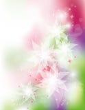 λευκό λουλουδιών ελεύθερη απεικόνιση δικαιώματος
