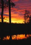 λευκό νύχτας Στοκ Φωτογραφίες