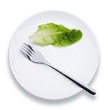 λευκό πιάτων Στοκ εικόνα με δικαίωμα ελεύθερης χρήσης