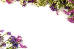 λευκό πλαισίων λουλουδιών ανασκόπησης Υψηλή ανάλυση για τις συνταγές στοκ φωτογραφία με δικαίωμα ελεύθερης χρήσης