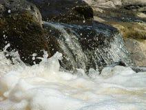 λευκό πλυσίματος Στοκ Εικόνες