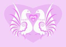 λευκό πουλιών ελεύθερη απεικόνιση δικαιώματος