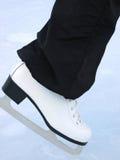 λευκό σαλαχιών Στοκ εικόνα με δικαίωμα ελεύθερης χρήσης