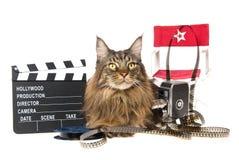 λευκό στηριγμάτων κινηματ στοκ φωτογραφία με δικαίωμα ελεύθερης χρήσης