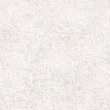 λευκό στόκων Στοκ Φωτογραφίες