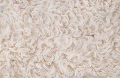 λευκό σύστασης γουνών αν& Στοκ φωτογραφίες με δικαίωμα ελεύθερης χρήσης