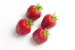 λευκό τεσσάρων φραουλών Στοκ Εικόνες