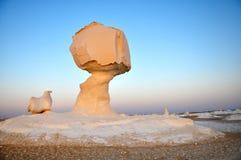 λευκό της Αιγύπτου ερήμω& Στοκ εικόνες με δικαίωμα ελεύθερης χρήσης