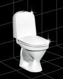 λευκό τουαλετών Στοκ Εικόνες