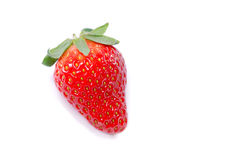 λευκό φραουλών Στοκ Εικόνες